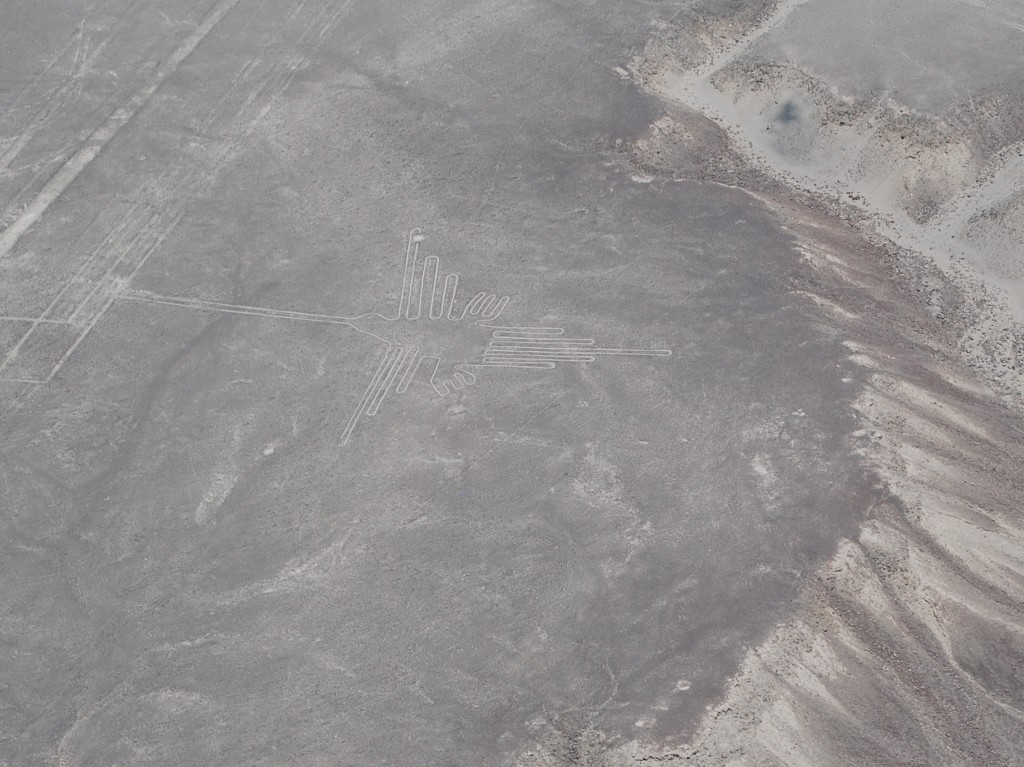 Hummingbird at Nazca Lines