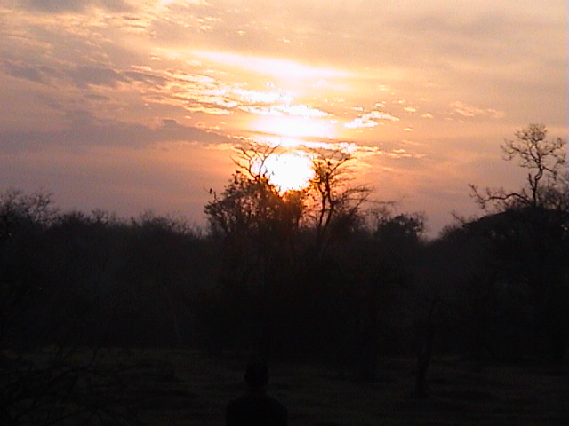 Sunrise at Mudumalai Forest