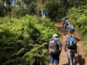 Trekking the first day